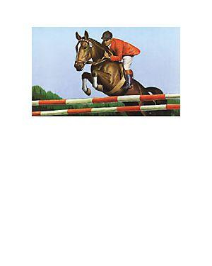 Plakat für Reitsport 42x59 cm